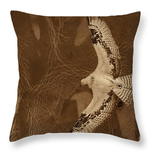 Osprey Throw Pillow featuring the photograph Into The Journey by Deborah Benoit