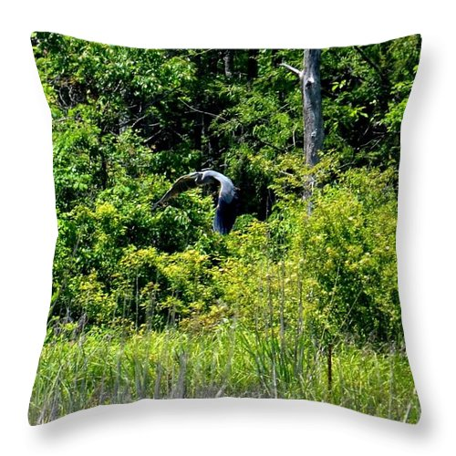 Into The Sunlight He Rises Throw Pillow featuring the photograph Into The Sunlight He Rises by Maria Urso