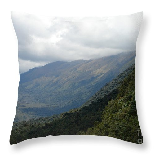 Valley Throw Pillow featuring the photograph Into The Valley by Lew Davis