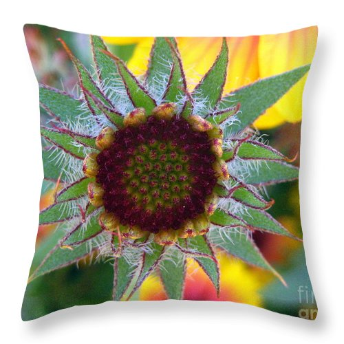 Flower Throw Pillow featuring the photograph Intricacies by Kathy Bassett