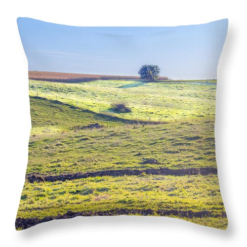 Landscape Throw Pillow featuring the photograph Iowa Farm Land #1 by Pete Hendley