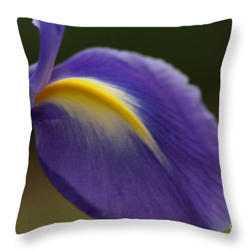Purple Throw Pillow featuring the photograph Iris 7 by Carol Lynch