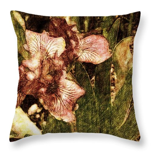 Iris Throw Pillow featuring the photograph Iris by Alice Gipson