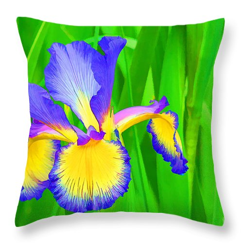 Flower Throw Pillow featuring the photograph Iris Blossom by Teresa Zieba