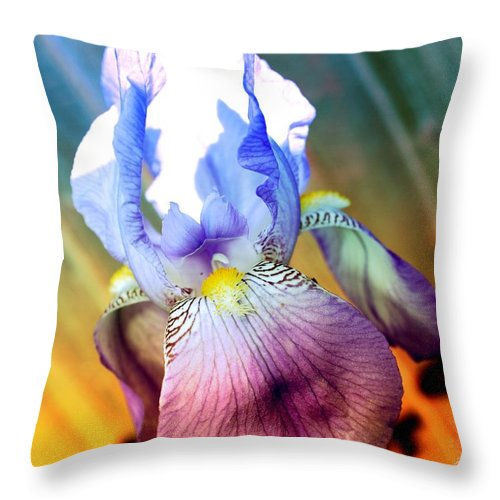 Iris Throw Pillow featuring the photograph Iris Drama by Carol Groenen