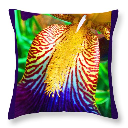 Iris Throw Pillow featuring the photograph Iris Petal By Jan Marvin by Jan Marvin