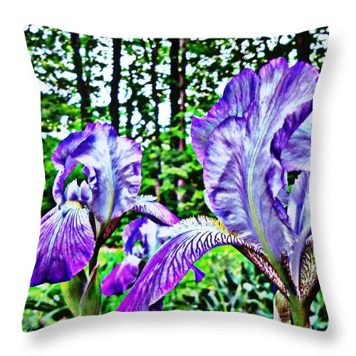 Iris Throw Pillow featuring the photograph Iris by Tania Eddingsaas