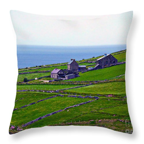 Fine Art Photography Throw Pillow featuring the photograph Irish Farm 1 by Patricia Griffin Brett