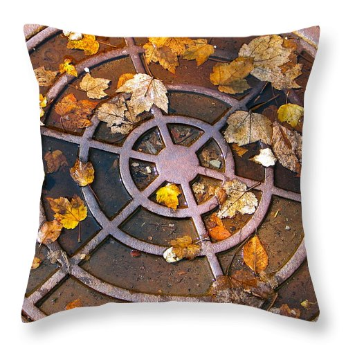 Metal Throw Pillow featuring the photograph Iron Biscuit by Rhonda Leonard