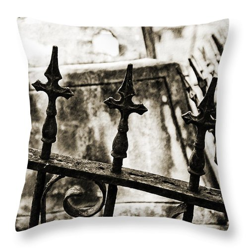 Texture Throw Pillow featuring the photograph Iron Guard - Sepia Toned by Scott Pellegrin