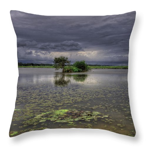 Reflection Throw Pillow featuring the photograph Island And Flowers by Ivan Slosar