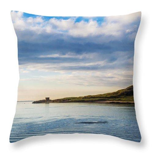 Island Throw Pillow featuring the photograph Island At Dublin Harbor by Daniel Heine