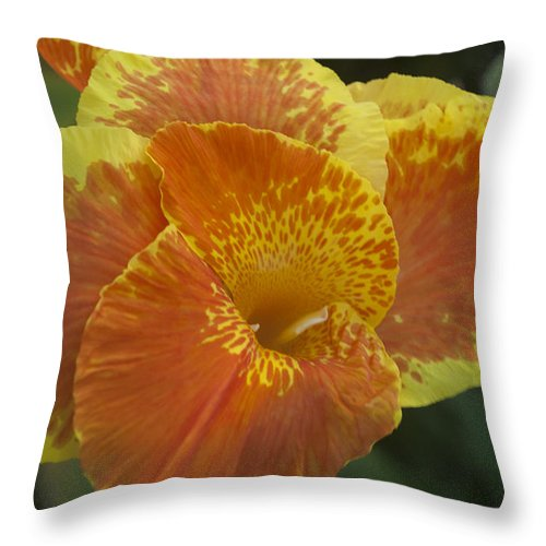 Floating Throw Pillow featuring the photograph Island Paradise by Miguel Winterpacht