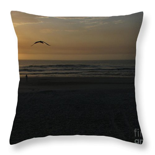 Florida Sunrise Throw Pillow featuring the photograph It Starts by Greg Patzer