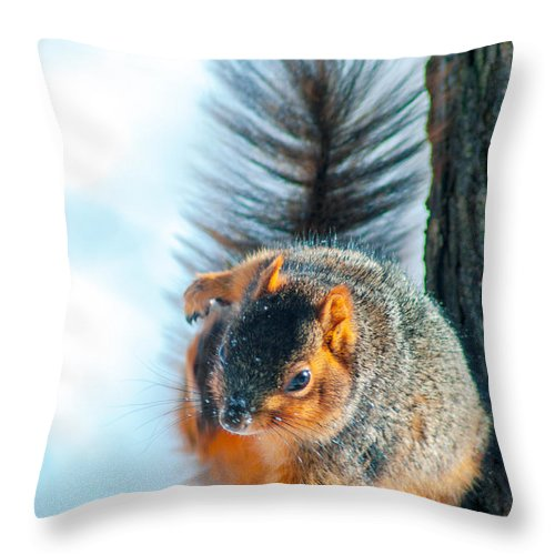Optical Playground By Mp Ray Throw Pillow featuring the photograph Itchy Dance by Optical Playground By MP Ray