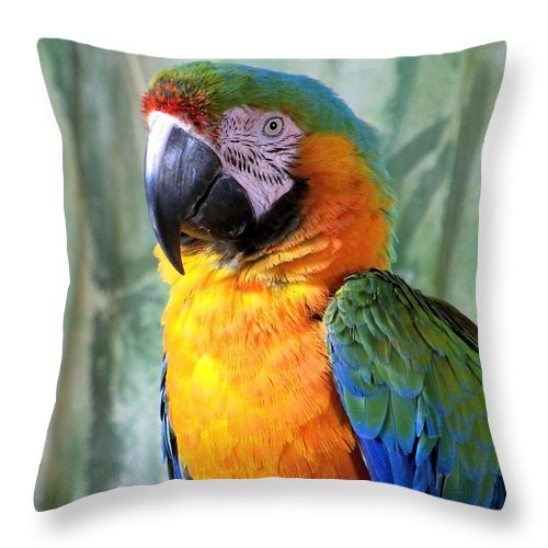 Exotic Birds Throw Pillow featuring the photograph It's A Jolly Good Day by Lingfai Leung