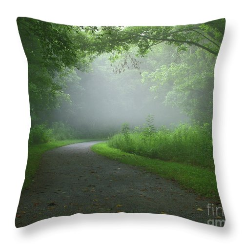 Green Throw Pillow featuring the photograph Mystery Walk by Douglas Stucky
