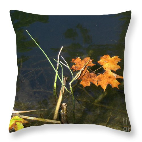 Landscape Throw Pillow featuring the photograph It's Over - Leafs On Pond by Brenda Brown