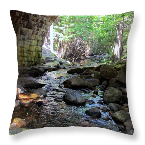 Bridge Throw Pillow featuring the photograph It's Water Under The Bridge by Elizabeth Dow