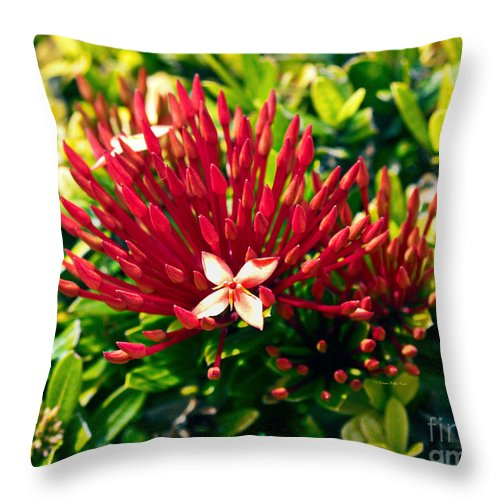 Fine Art Print Throw Pillow featuring the photograph Ixora II by Patricia Griffin Brett