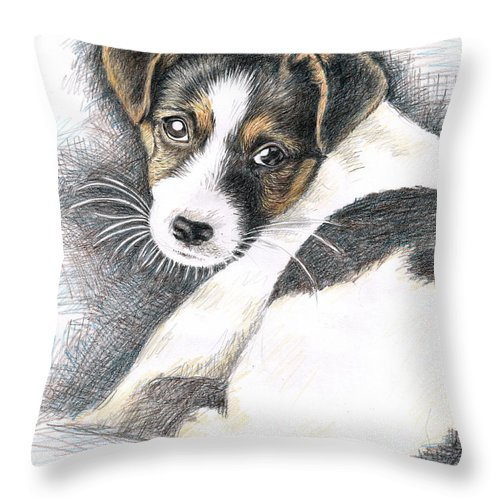 Dog Throw Pillow featuring the drawing Jack Russell Puppy by Nicole Zeug
