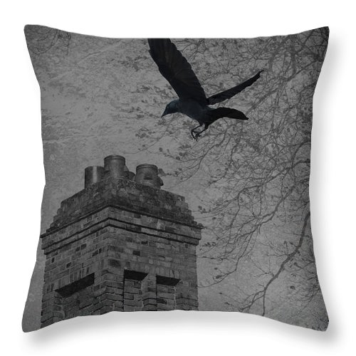 Jackdaw Throw Pillow featuring the photograph Jackdaw Flying To Chimney by Amanda Elwell