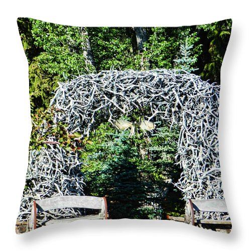 Jackson Hole Throw Pillow featuring the photograph Jackson Hole Wyoming by Cathy Anderson