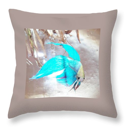Fish Throw Pillow featuring the photograph Jake Called Him Rock by Barbara McDevitt