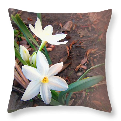 Floral Throw Pillow featuring the photograph January 2014 Paper-whites In Bloom by Joyce Dickens