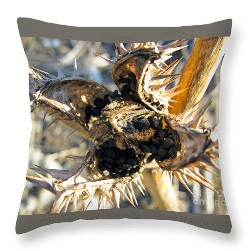 Angels Trumpet Throw Pillow featuring the photograph Jaws by Ausra Huntington nee Paulauskaite