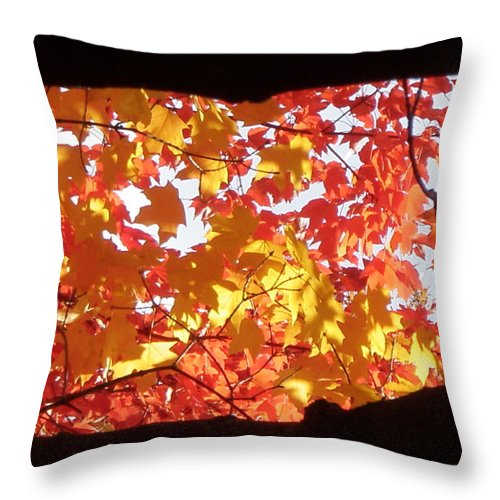 Fall Throw Pillow featuring the photograph Jefferson Barracks by Monte Landis