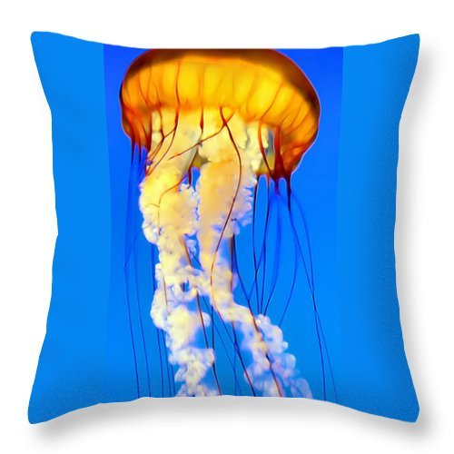 Jellyfish Throw Pillow featuring the photograph Jellyfish 5 by Dawn Eshelman
