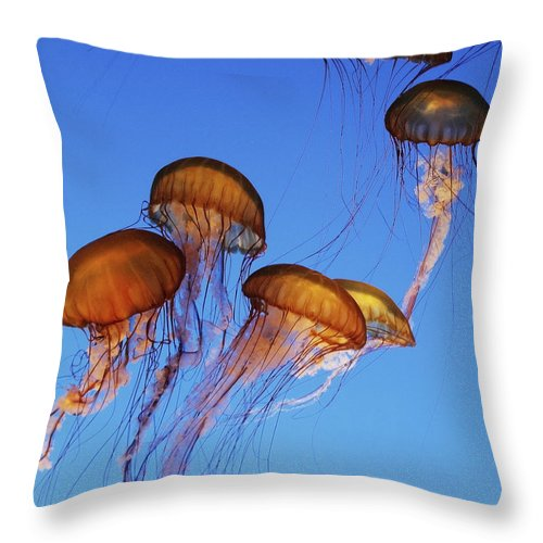 Jellyfish Throw Pillow featuring the photograph Jellyfish Swarm by Robert Woodward