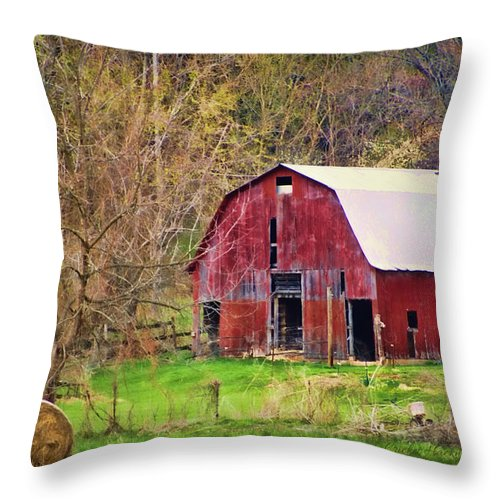 Barn Throw Pillow featuring the photograph Jemerson Creek Barn by Cricket Hackmann
