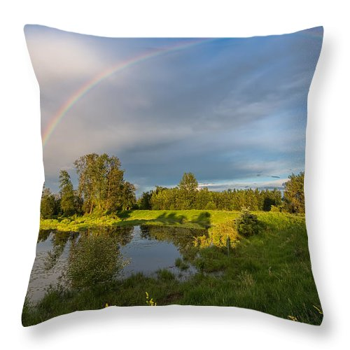 Beautiful Throw Pillow featuring the photograph Jerry Sulina Park Rainbow by James Wheeler