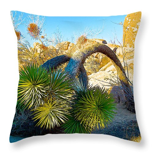 Joshua Tree Bowing Down At Quail Springs In Joshua Tree Np Throw Pillow featuring the photograph Joshua Tree Bowing Down At Quail Springs In Joshua Tree Np-ca by Ruth Hager