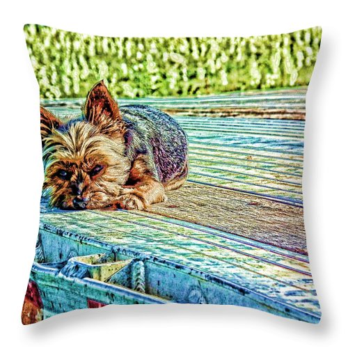 Dog Throw Pillow featuring the photograph 'jovie' Truckin Dogs Need Breaks Too by Robert Rhoads