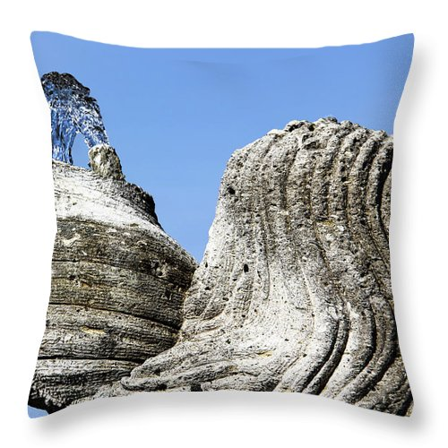 Caraffe Of Life Throw Pillow featuring the photograph Jug Of Life by Mariola Bitner
