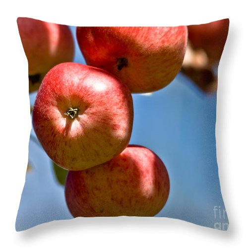 Throw Pillow featuring the photograph Juicy Harvest by Cheryl Baxter