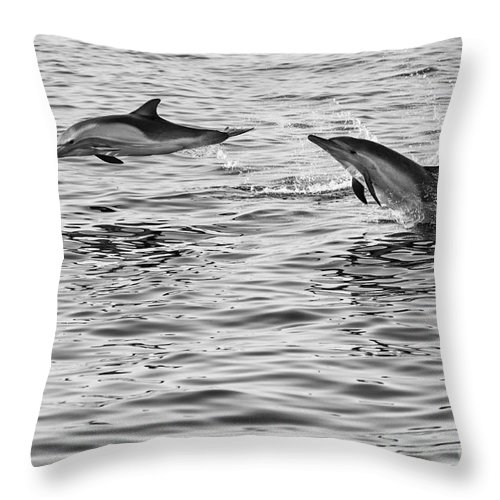 Common Dolphin Throw Pillow featuring the photograph Jump For Joy - Common Dolphins Leaping. by Jamie Pham