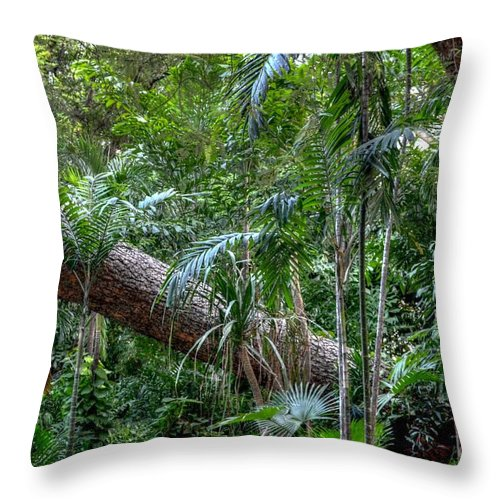 Michelle Meenawong Throw Pillow featuring the photograph Jungle by Michelle Meenawong