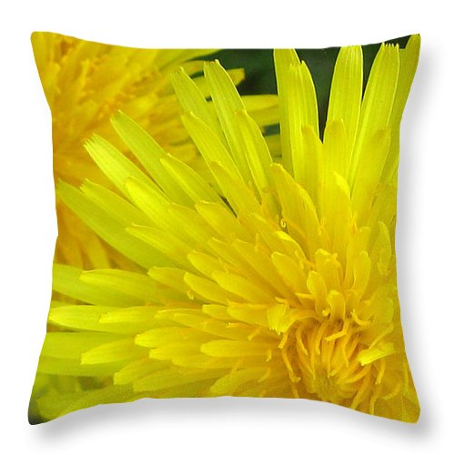 Nature Throw Pillow featuring the photograph Just Dandy by Janice Westerberg