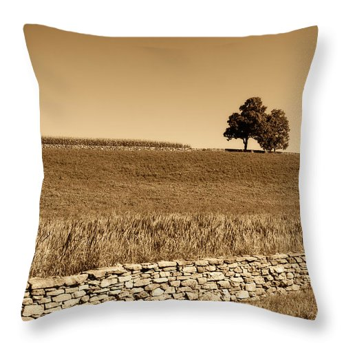 Trees Throw Pillow featuring the photograph Just The Two Of Us by Donna Doherty