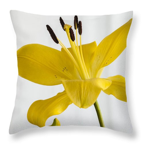 Bloom Throw Pillow featuring the photograph Ka Bloom by Dennis Reagan