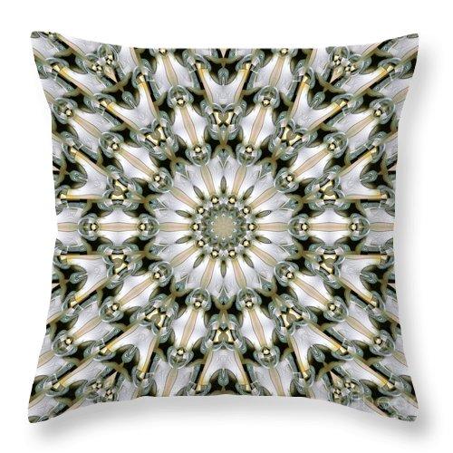 Kaleidoscope Throw Pillow featuring the digital art Kaleidoscope 28 by Ron Bissett