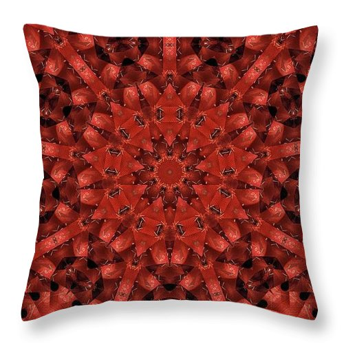 Kaleidoscope Throw Pillow featuring the photograph Kaleidoscope 60 by Ron Bissett