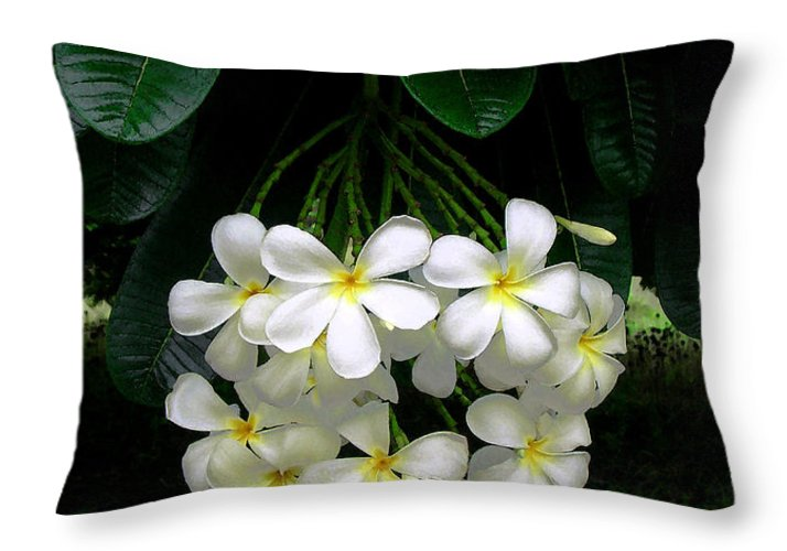 Hawaii Iphone Cases Throw Pillow featuring the photograph Kawela Plumeria by James Temple