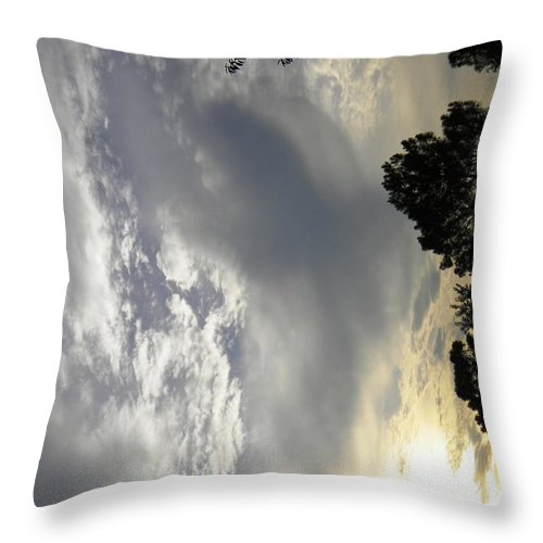 Bible Throw Pillow featuring the photograph Keeping The Faith by Matthew Seufer