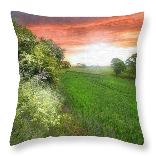 Landscapes In Art Throw Pillow featuring the photograph Kent Between Storms by Fran J Scott