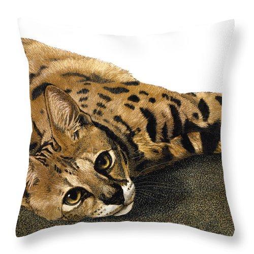 Cat Throw Pillow featuring the drawing Kili Man Jaro by Ann Ranlett